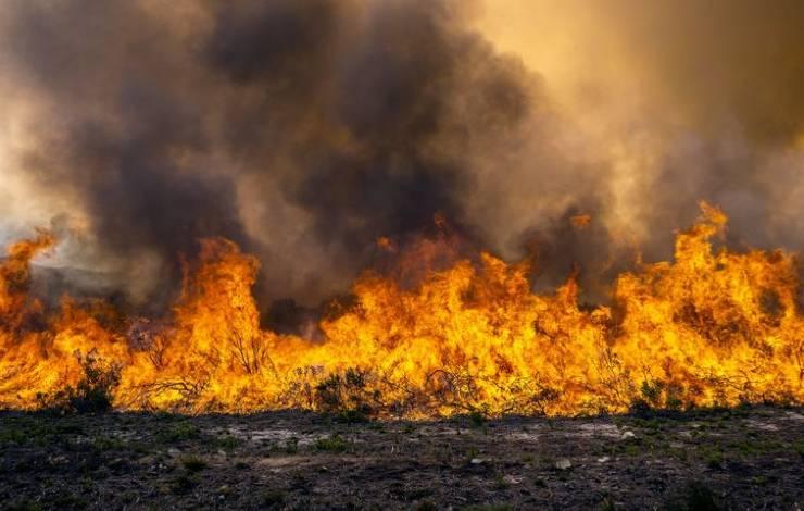Incendio en el Delta del Paraná
